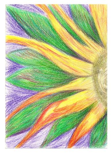Flor Solar